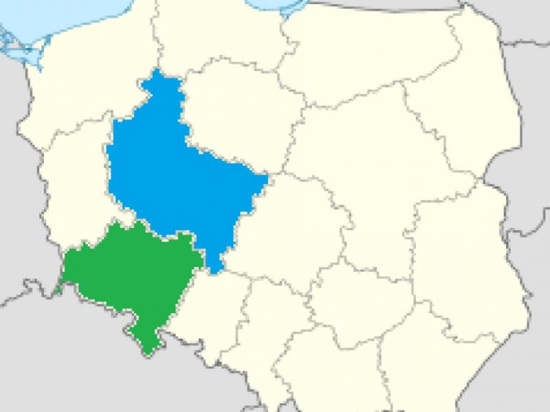 Działania profilaktyczne w województwie wielkopolskim i dolnośląskim